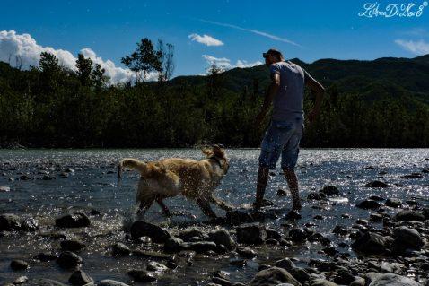 Il bagno in un fiume per un cane: stop all'inquinamento delle acque