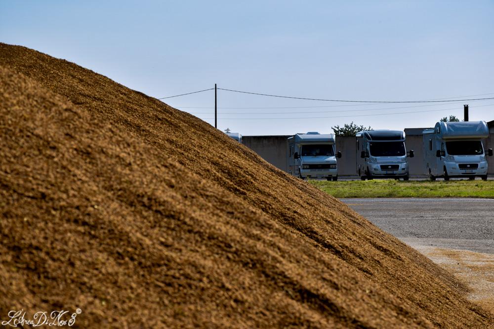 Codigoro produzione riso