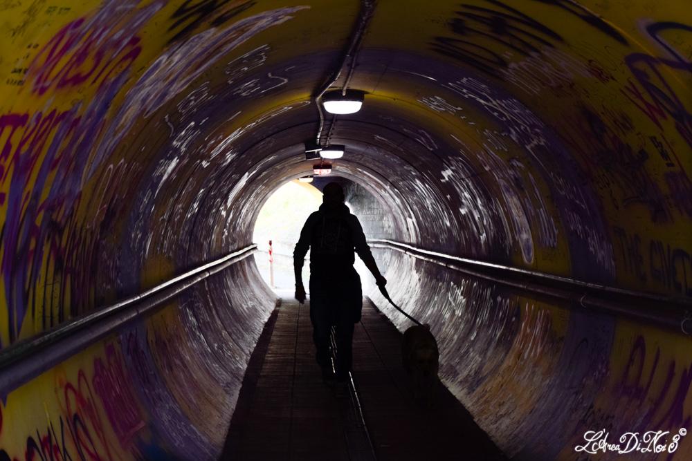 Vignola tunnel