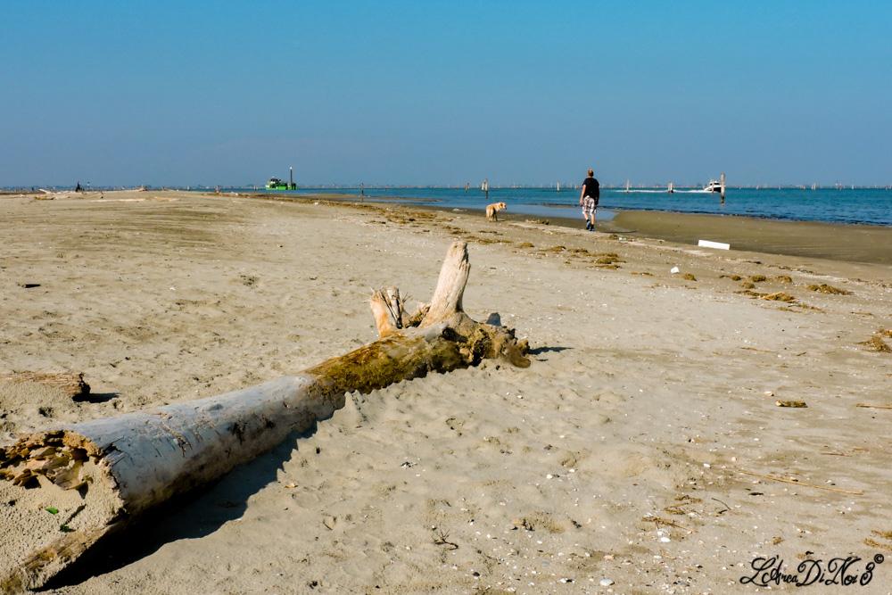 Lido di Volano spiaggia