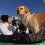 Vicino alle piste da sci con il cane: 2 idee per non annoiarsi