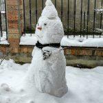 Un cane alle prese con un pupazzo di neve