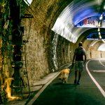 Giro per Ospedaletti Ligure, raggiungibile a piedi dall'area sosta camper di Sanremo