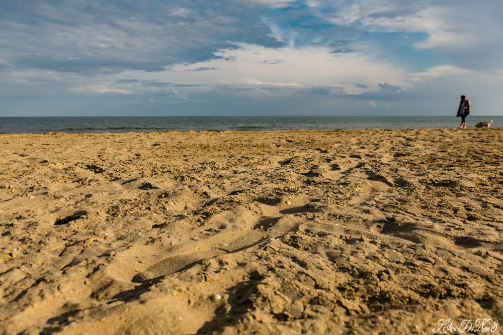 Cavallino Treporti spiaggia per cani