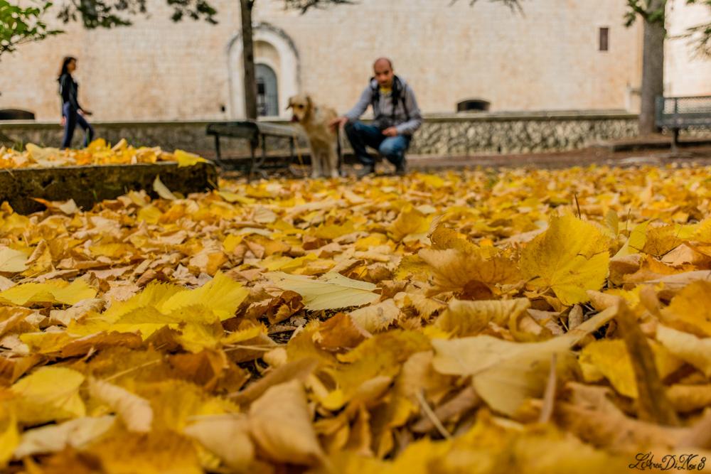 Forte Spagnolo L'Aquila autunno