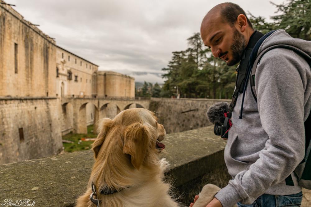 L'Aquila Forte Spagnolo cane