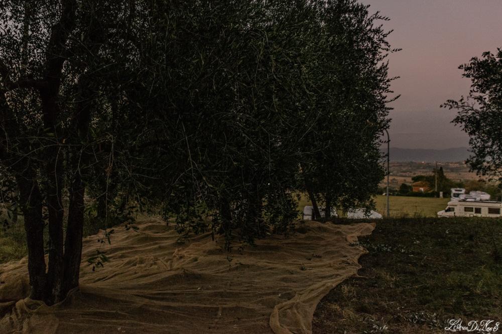 Lucignano area sosta camper