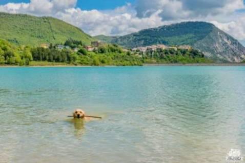 Dove andare col camper in Molise: il Lago di Castel San Vincenzo