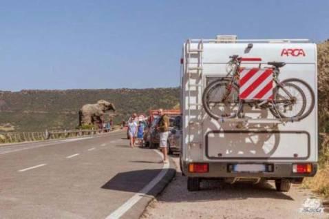Consigli per vedere la Roccia dell'Elefante di Castelsardo in camper