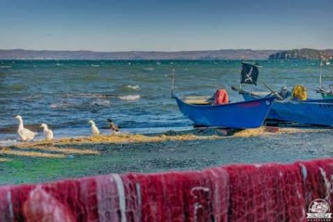 Quiz sul borgo di Marta e il Lago di Bolsena: curiosità e particolarità