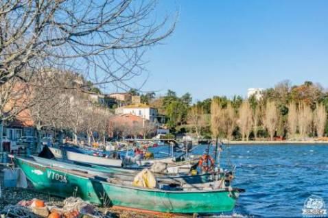 Lago di Bolsena in camper: cosa vedere a Marta, il borgo dei pescatori