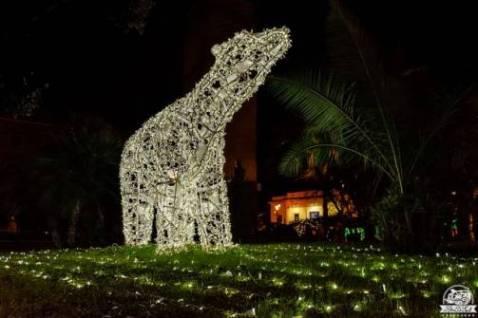 Campania in camper: le luci d'artista di Salerno